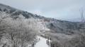 Neige au mont Taebaek