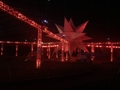 مهرجان الأضواء في أولسان