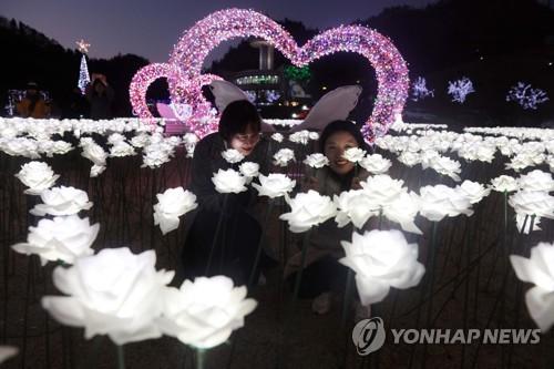'차밭에서 겨울 추억을'…29일 보성..