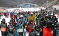 スキーシーズン入り