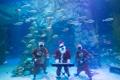 水中圣诞颂