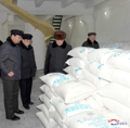 NK premier inspects fertilizer factory