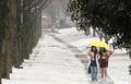 雪のキャンパス
