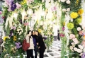 Jardin de fleurs de printemps