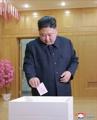 Kim Jong-un vote