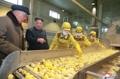 El líder norcoreano dirige el trabajo de la comarca de Samjiyon