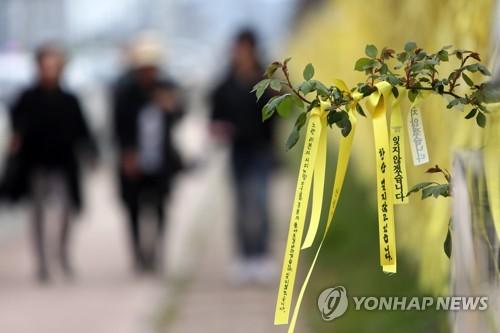 세월호 참사 5주기에 쏟아진 '막말'