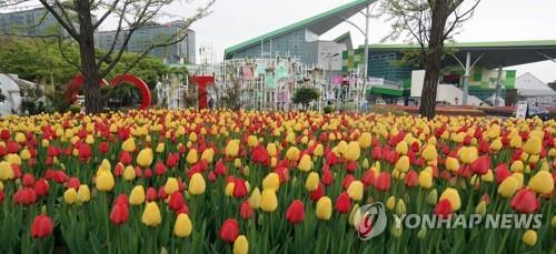 [#꿀잼여행] 수도권: 전 세계 꽃 ..