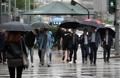 ソウルに春の雨
