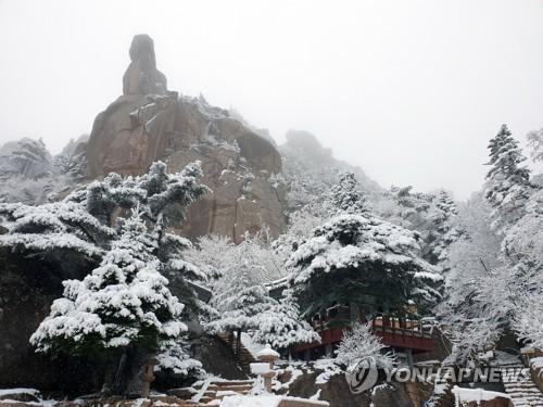 '계절 역주행' 겨울왕국으로 변한 설악산…춘설 10㎝ 펑펑