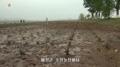 Sequía en Corea del Norte