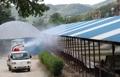 アフリカ豚コレラ防げ 防疫作業始まる