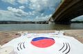 ドナウ川を見守る太極旗