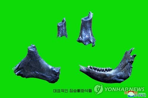 北, 예성강 유역서 구석기시대 유적 발굴
