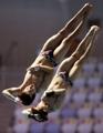 Saltadores surcoreanos