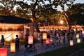 Festival nocturno de Suwon