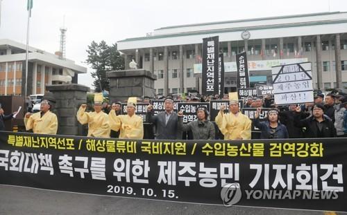 """""""제주농업 태풍으로 큰 피해…특별재난지역 선포하라"""""""