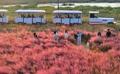 ′완연한 가을 날씨′…전국 곳곳의 가을 풍경