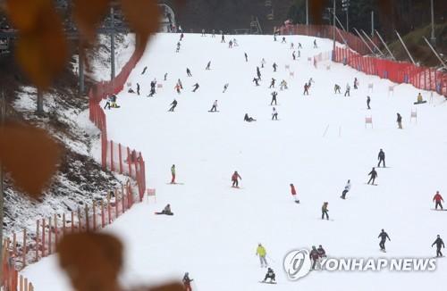 '겨울이 왔다!'…스키장·설산 등서 겨울 정취 만끽