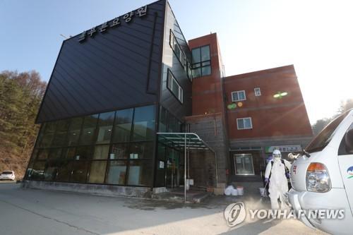 봉화 푸른요양원 확진 80대 사망…국내 총 168명